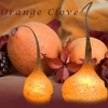 Primitive Orange Clove - Scented Bulb