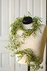 Smilax Garland | Green | 6'