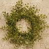 WREATH - BABY GRASS