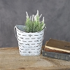 WHITE DISTRESS TIN BUCKET