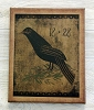 8X10 PRIMITIVE CROW