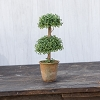 11.5 IN SMALL DOUBLE BOXWOOD TOPIARY