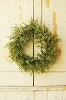 Baby's Grass Wreath | New Green | 20