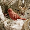 RED AND GREEN BIRD CLIP-ON ORNAMENT