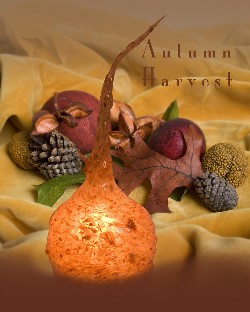 Primitive Autumn Harvest- Scented Bulb