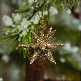 BOX OF TWELVE CHAMPAGNE GLITTER MORAVIAN STAR ORNAMENTS