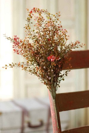 Baby Grass Bush - Red
