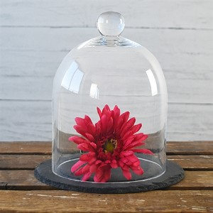 "8"" BELL JAR WITH SLATE"