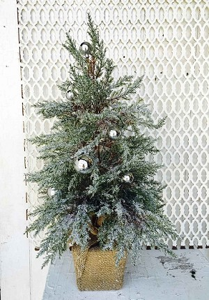 Cedar Tree with Silver Plated Ball | 24""
