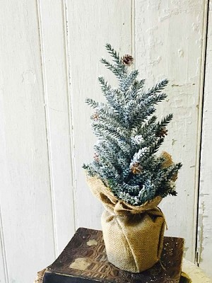 "12"" Pine & Snow Tree with Burlap Stand"