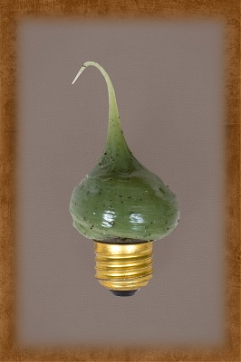 7.5 Watt Kiwi Berry Scented Bulb