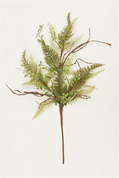 Pick Ferns and Foliage