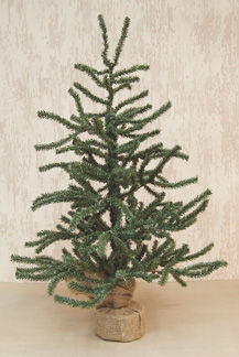 2 Foot Pine Tree with Burlap Base