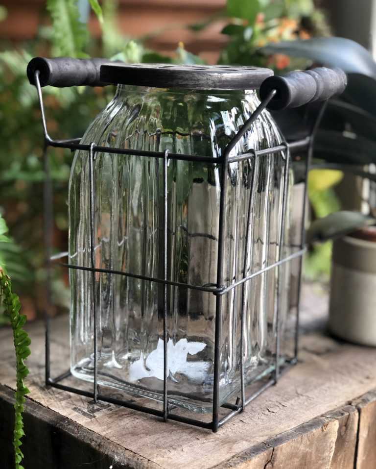 Tall Ribbed Frog Jar with Wire Holder