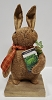 Brown Bunny Holding Cabbage Book