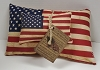 Set of 2 Americana Pillows