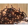 Teeny Lights Brown Cord 100ct