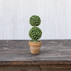 8.25 IN MINI DOUBLE BOXWOOD TOPIARY