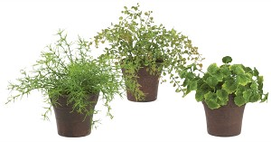 "6-9""MINI FOLIAGE POT (3ASST)"