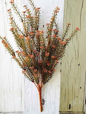 "20"" Astilbe Bush - Rusty"
